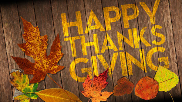 Happy-Thanksgiving-from-mageworx