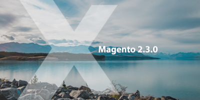 Magento 2.3.0: Expert's Opinion   MageWorx Blog