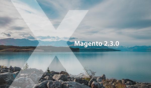 Magento 2.3.0: Expert's Opinion | MageWorx Blog