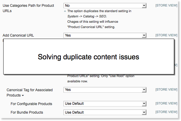 Magento SEO: solving duplicate content issues.